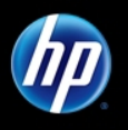 HP Software Services