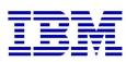 IBM Unica