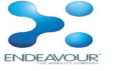 Endeavour Software Technologies